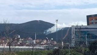 İstanbul Sultanbeyli'de Aydos Ormanı'nda henüz bilinmeyen bir sebeple yangın çıktı. İtfaiyenin olay yerindeki çalışmaları sürüyor.